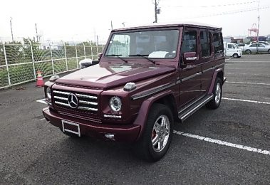 Mercedes G320 Long 1996 (Unique Color Combination & Great Technics)